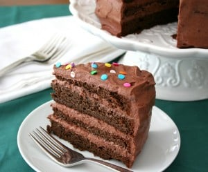 Low Carb Chocolate Cake 6