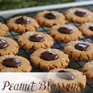 Low Carb Peanut Blossoms
