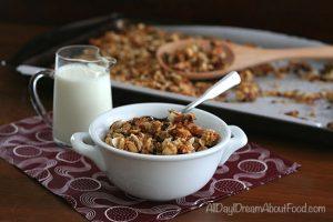 Low Carb Dairy Free Coconut Cocoa Nib Granola
