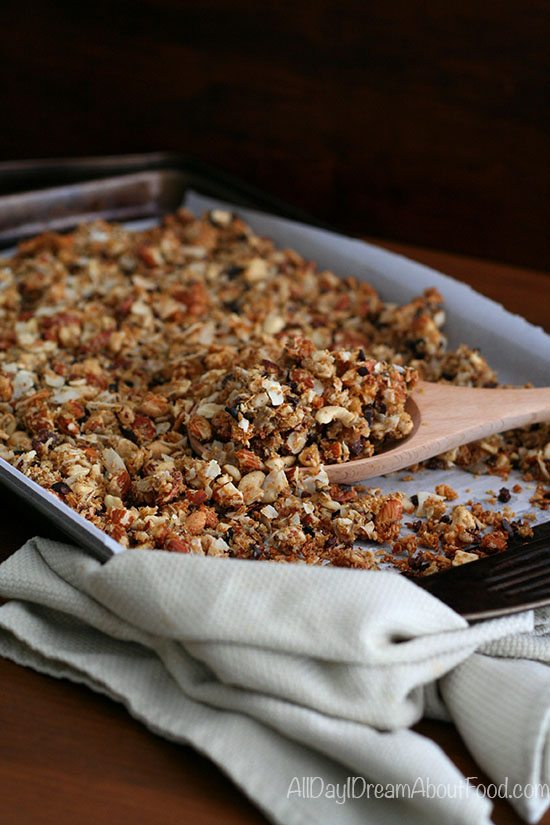 Easy Low Carb Coconut Cacao Nib Granola