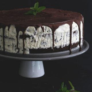Low Carb Mint Chocolate Chip Ice Cream Cake