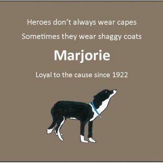 Introducing Marjorie!