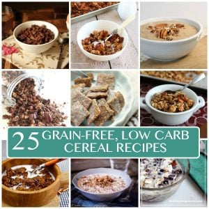 Best Low Carb Grain-Free Cereal Recipes