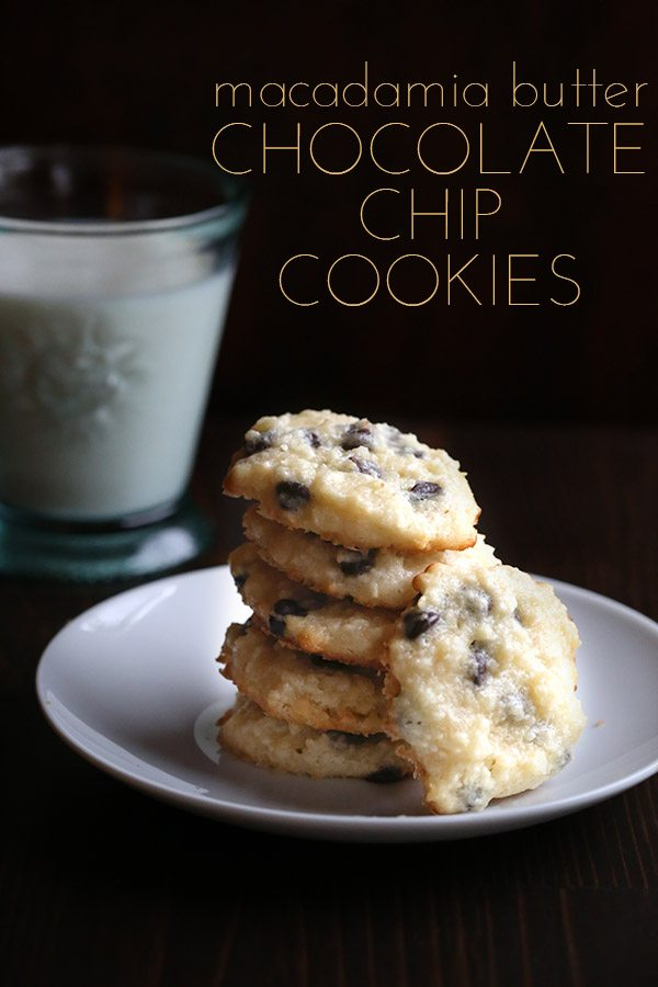 Low Carb Macadamia Nut Butter Chocolate Chip Cookie Recipe