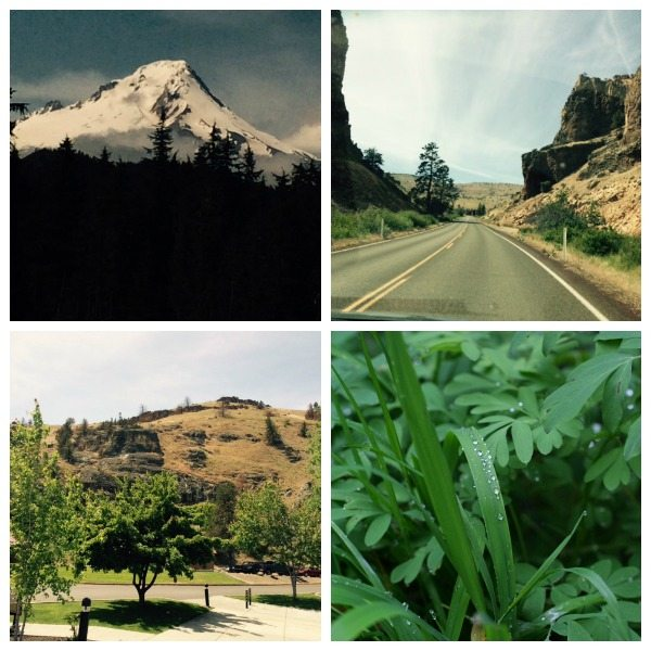 The many landscapes of Oregon