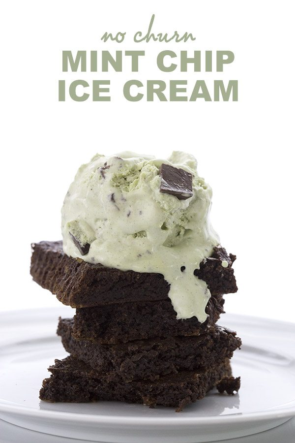 Low Carb Mint Chocolate Chip Ice Cream Recipe. No churn!