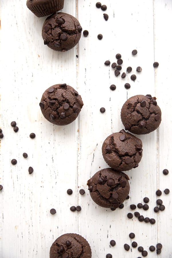 Top down photo of chocolate mini muffins with chocolate chips