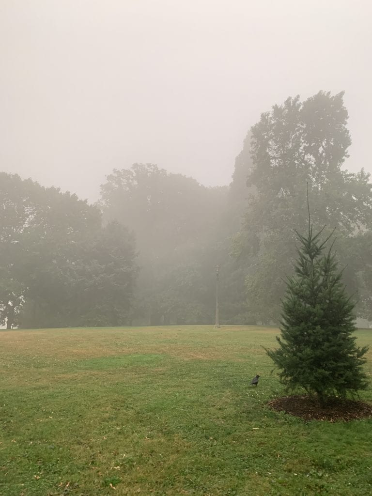 Wildfire smoke fills a local park in Portland, Oregon